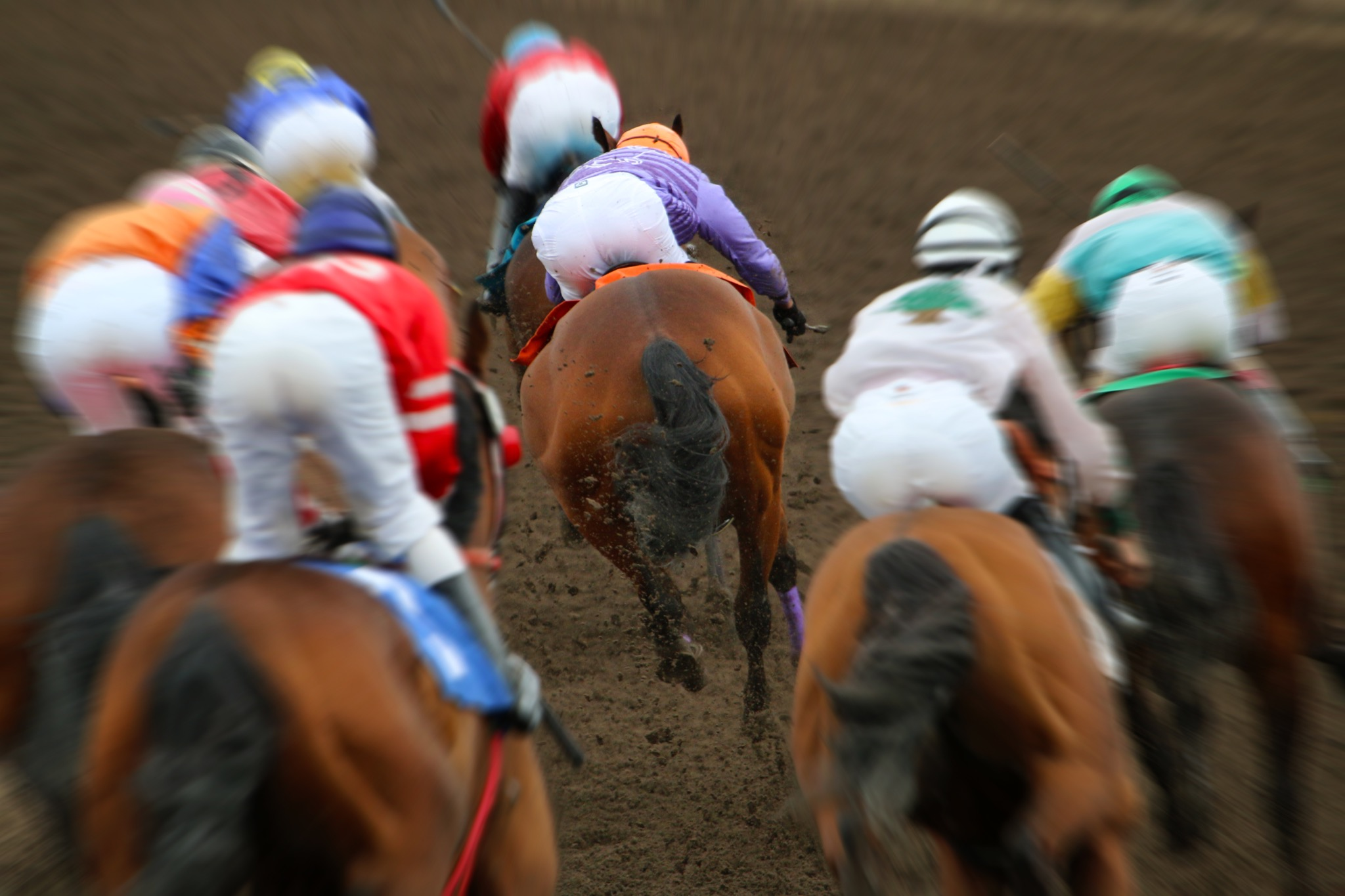 Why BetVictor is a Great Choice for Horse Racing Betting Beginners