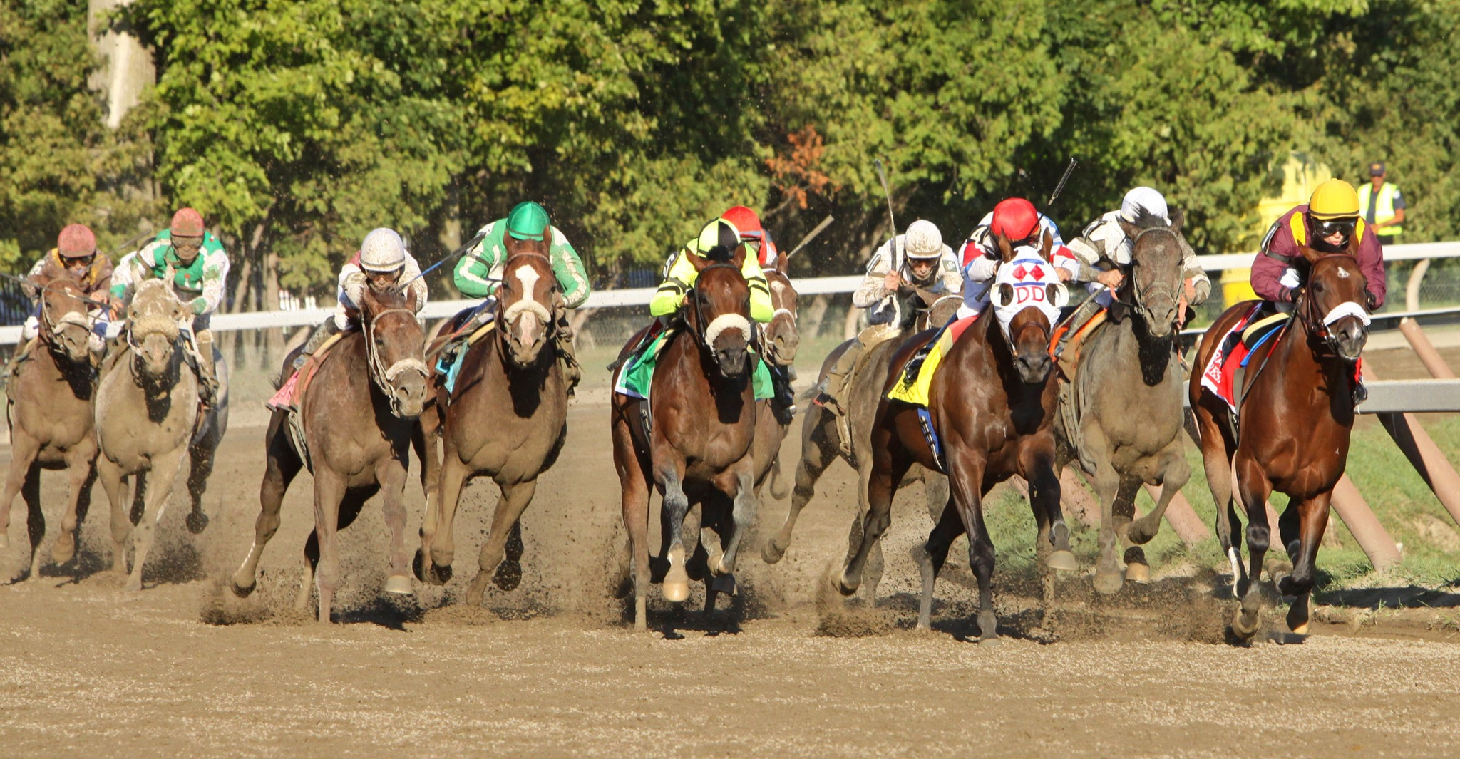 Who offers the best horse racing betting offers?